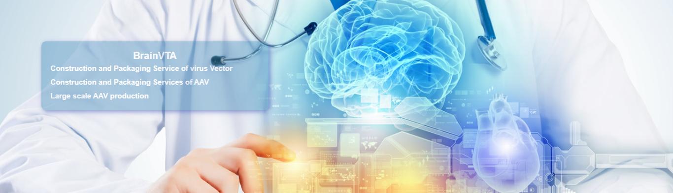 BrainVTA services